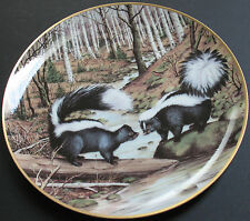 Striped Skunks At A March Stream Decorative Plate Limited Edition Porcelain