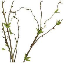 deko blumen k nstliche pflanzen mit weiden ste zweige g nstig kaufen ebay. Black Bedroom Furniture Sets. Home Design Ideas