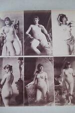 CALAVAS ETUDE DE NUS  TIRAGE ALBUMINE ALBUMEN VINTAGE PRINT 1880 PEINTURE ref11