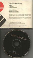 DAVID SANBORN Rikke w/ RARE EDIT PROMO RADIO DJ CD single 1996 USA MINT