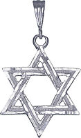 Sterling Silver Jewish Charm Star of David Pendant Necklace with Figaro Chain