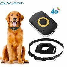 4G Pet GPS Tracker Waterproof Dog GPS Tracking Collar Mini Cat Anti-Lost Alarm