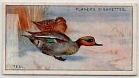 Common Teal Duck Gamebird Anas crecca c90  Y/O Ad Trade Card