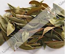 Feuilles de Myrte séchée BIO 40g (Tisane Infusion) Myrtle Leaves, Hojas de Mirto