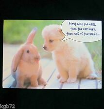 Leanin Tree Easter Greeting Card Flowers Puppy Dog  and Bunny Multi Color E35