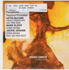 (FI666) The Divine Comedy, Love What You Do - 2001 DJ CD