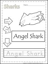 20 laminated Sharks Dry Erase Preschool Writing Activity.   Ocean and Sea Life