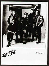 FOTO ORIGINALE ANNI 80 LOS LOBOS ROCK FOLK COUNTRY POP