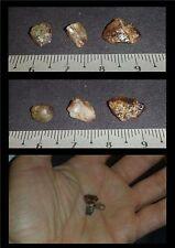 Lot N°8 de Zircon brut du Cambodge 11,50ct/ minéraux /lithothérapie/ zirconium