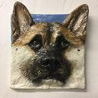 Akita Dog Ceramic Tile Handmade 3d Pet Portrait In Stock Alexander Art Made USA