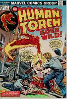 HUMAN TORCH Goes Wild #2 (Nov 1974) Marvel Comic