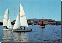 CPM - CHARAVINES-les-BAINS - Voilliers sur le lac