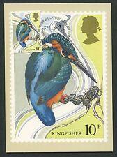 Gb Uk Mk 1980 Birds Kingfisher Kingfisher Maximum Card Maximum Card Mc cm d6172