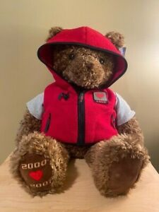 Vintage 2000-2001 GUND WISH BEAR