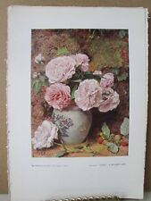 Vintage Print,ROSES,Water Colour Society,1804-1904