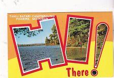 "*Michigan Postcard-""Hi There...Tamu Safari Campground"" -Powers-"