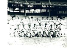 1943 NLWS CHAMPIONS HOMESTEAD GRAYS  8X10 TEAM PHOTO GIBSON FORBES BASEBALL HOF