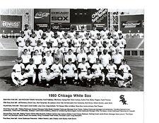 1993 CHICAGO WHITE SOX TEAM PHOTO BURKS RAINES FISK   BASEBALL ILLINOIS