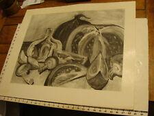 JAN STEELE, drawing: pencil: STILL LIFE: onion, tomatoe, mushrooms