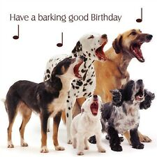"""Pet Pawtrait Birthday Card - Mixed Dogs """"Dog Song"""""""