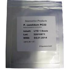 Penicillium Candidum PC22