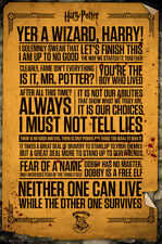 Harry Potter - Movie Poster / Print (Famous Quotes)