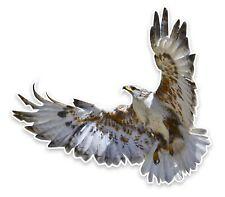 Ferruginous Hawk Sticker Vinyl Decal Hawk Bird Of Prey 1-007