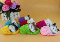Decor Simulation Slippers Cat Sound Sponge Stuffed Ornaments Kids Toys
