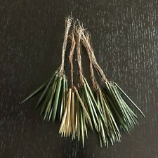 """125ct. 2 1/2"""" Green Wooden Wired Picks Florist Wood Stem Floral Bows Crafts"""