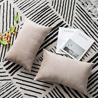 2 Pack Cozy Soft Velvet Rectangular Throw Pillow Cases for Farmhouse Home Decor