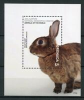 Grenada 2017 MNH Wild Animals of World Dwarf Rabbit 1v S/S Rabbits Stamps