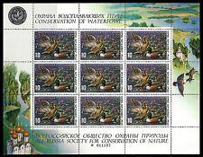 1991 Russia, Conservation of Waterfowl. Ducks. 1 Full Sheet, MNH (BI#BX41)