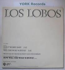 """LOS LOBOS - Don't Worry Baby - Ex Con 12"""" Single PROMO"""