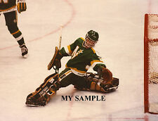 "DON BEAUPRE Minnesota North Stars 8"" by 10"" Photo Hockey Goalie Mask Pads #2"