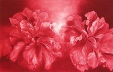 "GH Rothe ""Hibiscus"" Mezzotint on paper ART 1981 Hand Signed Limited Edition"