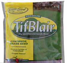 Tifblair Centipede Grass Seed - 1/2 Lb.