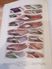 1952 THE POPULAR HANDBOOK OF BRITISH BIRDS HOLLOM OOLOGY ORNITHOLOGY NAT HIST