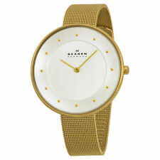 Skagen Women's 38mm Gold Plated Stainless Steel Mineral Glass Watch SKW2141