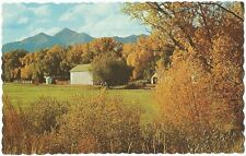 Postcard Colorado Nathrop Mt Yale Autumn View Chaffee County c1950s-60s MINT