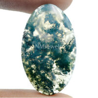 Cts. 23.20 Natural Moss Agate Cabochon Oval Shape Cab Loose Gemstone