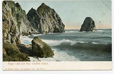 (0529) c1906 P/C CATALINA ISLAND CA, SUGAR LOAF & BAY UNUSED