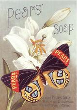 QUALITY CANVAS ART PRINT * PEARS SOAP * Lilies