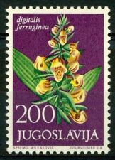 Jugoslavia 1965 SG 1163 Nuovo ** 100% Piante medicinali