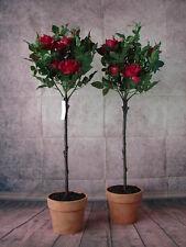 2 künstliche Rosenbäume 100cm getopft pink Rosen Kunstblumen Kunstrosen Rose