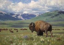 Tucker Smith RETURN OF SUMMER art print, Buffalo, Montana ARTIST PROOF A/P#49/50