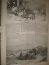 Reno Regent's Park Zoo Londres & barco piloto salir por E Duncan 1850 Impresiones