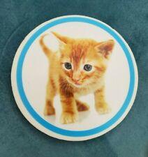 Jumbo Large Baby Cat Kitten Circular Picture Eraser