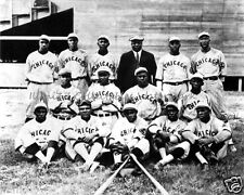 1919 CHICAGO AMERICAN GIANTS NEGRO LEAGUE TEAM 8x10 PHOTO