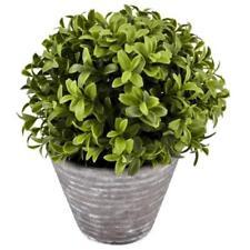 deko blumen k nstliche pflanzen mit buchsb ume stehende g nstig kaufen ebay. Black Bedroom Furniture Sets. Home Design Ideas
