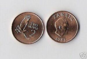 ZAMBIA 2 NGWEE KM-10 1983 x 1000 Pcs Lot KAUNDA EAGLE UNC CURRENCY 1,000 COIN